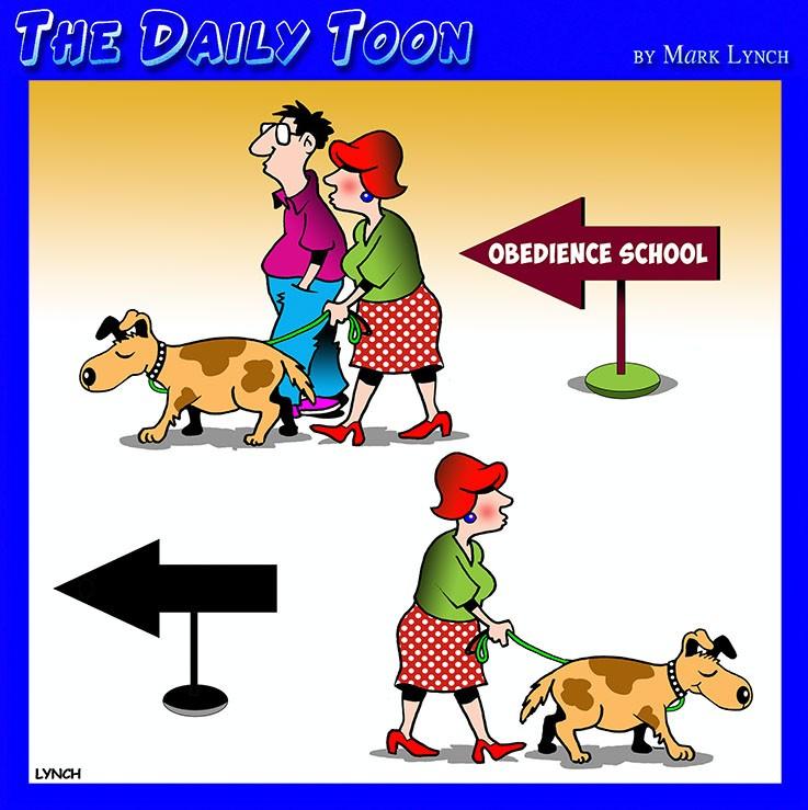 Obedient husband cartoon