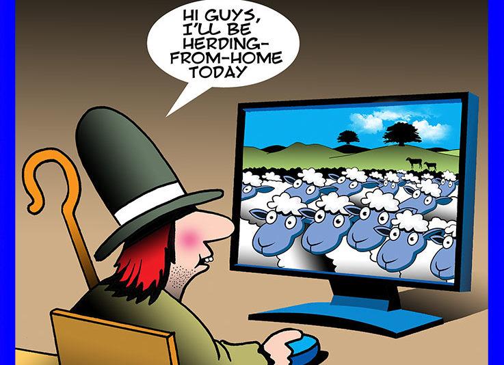 Sheep herder cartoon