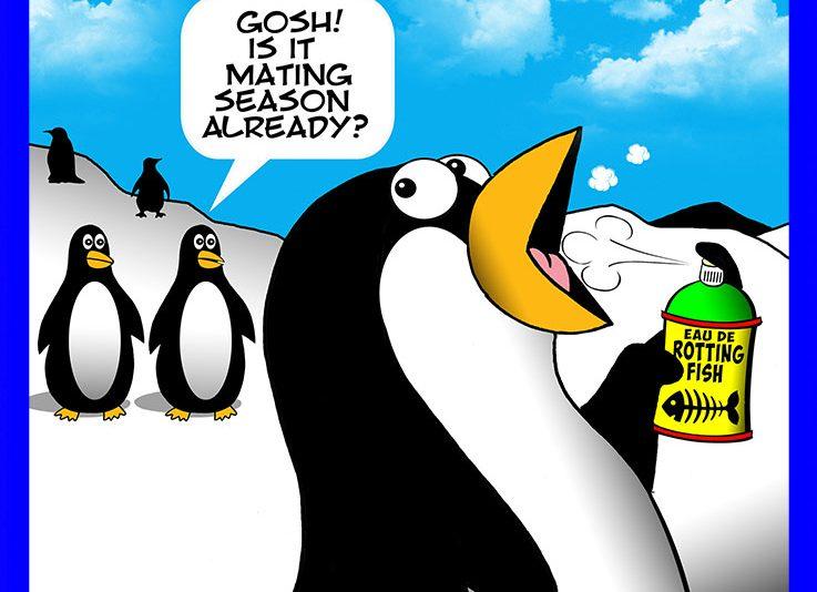 Mating season cartoon