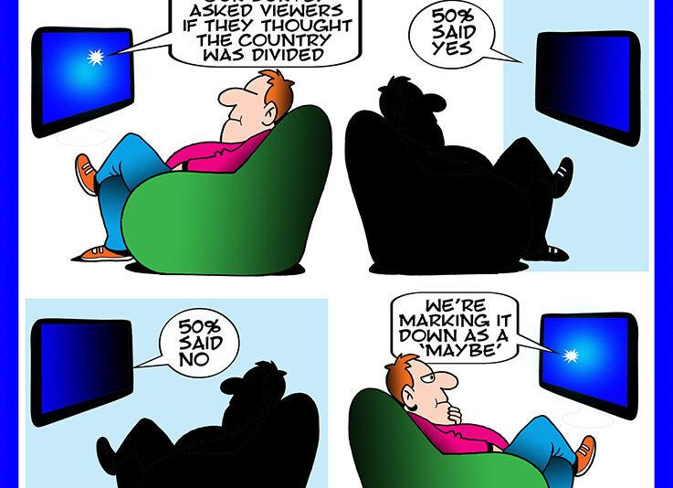 Survey cartoon