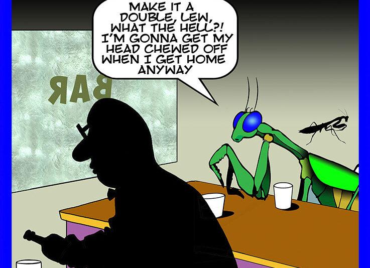 Preying Mantis cartoon