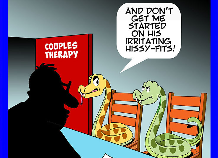 Couples therapy cartoon