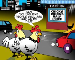 Chicks cartoon