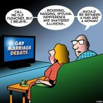 Gay marriage debate cartoon