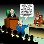 Courtroom cartoon