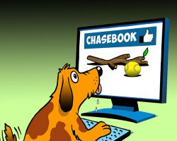 Dog chasing tennis ball cartoon