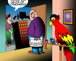 Parakeet cartoon