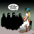 More than one wife cartoon