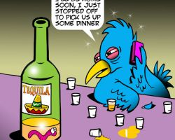 Drunk bird cartoon