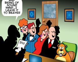 Beaver cartoon