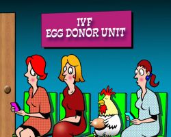 Egg donor cartoon