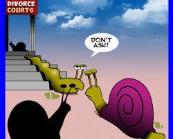 Divorce court cartoon