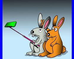 Rabbits cartoon